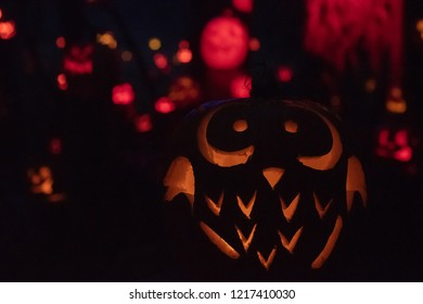 Owl Jack-o-Lantern at Halloween
