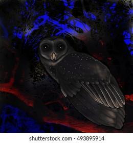 owl on branch  digital illustration, night scene, hand drawn owl on photographic background, illuminated branches,