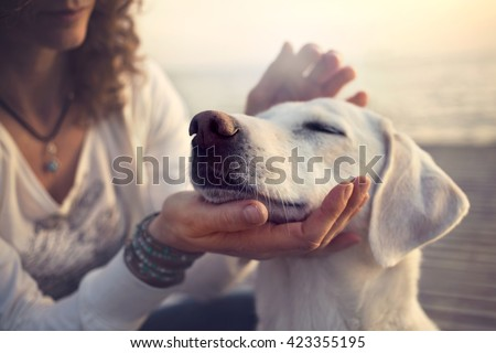 owner caressing gently her dog