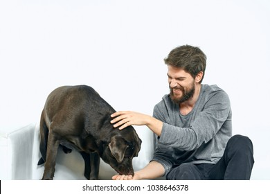 the owner feeds the dog, pet