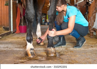 Owner horsewoman taking care of chestnut horse hoof. Indoors multicolored horizontal image.