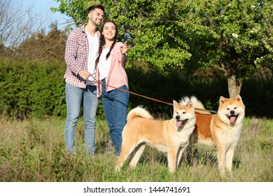 Owners walking their adorable Akita Inu dogs in park