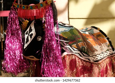 Ox with typical robes of the festival bumba meu boi in sao luis, maranhao, brazil