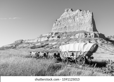 Oxen pull a Conestoga covered wagon on the Oregon Trail, at Mitchell Pass, Scotts Bluff National Monument, near Eagle Rock and Scottsbluff, Nebraska.
