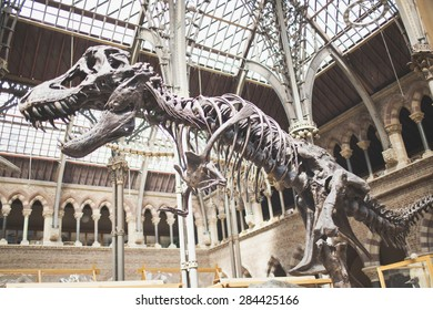 OXFORD - UK, MAY 26: Famous Oxford University Museum of Natural History, is a museum displaying many of the University of Oxford's natural history specimens, located on Parks Road in Oxford, England.