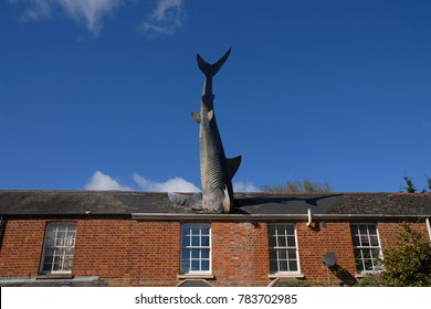 Oxford, United Kingdom - April 11, 2015: The Headington Shark
