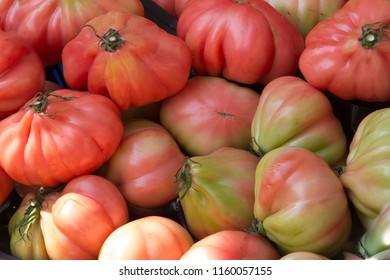 Oxtach tomatoes with different degree of ripeness at a farmer's market stall in a box