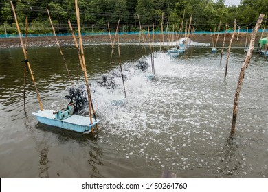 Oxygen generator is hitting the surface to create the bubbles for wastewater treatment,Thailand, Agriculture, Bubble, Clean,Shrimp farming