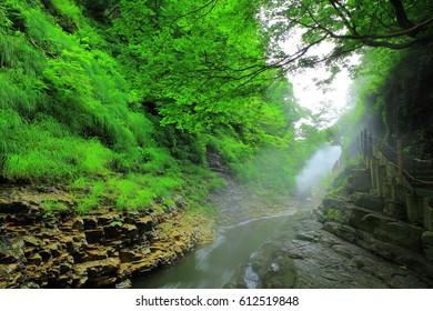 Oyasu Gorge in summer