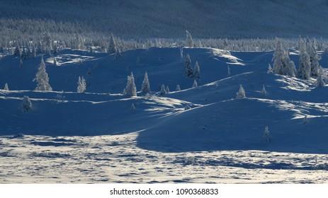 Oymyakon, Yakutia. Winter landscape