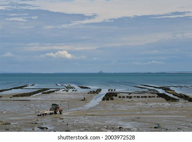 Oyster beds on the Atlantic Ocean with Mont Saint Michel in the background on a beautiful cloudy day