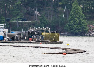 Oyster farming and oyster traps, floating mesh bags, along the Damariscotta River in Maine