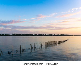 The Oyster Farms in beautiful morning