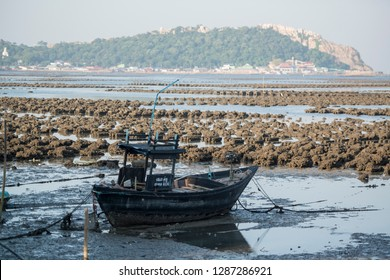 the oyster farms at the coast of the Town of Ang Sila near Beangsaen in the Provinz Chonburi in Thailand.  Thailand, Bangsaen, November, 2018