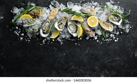 Oyster with lemon on ice. Seafood. Top view. On a black background. Free copy space.
