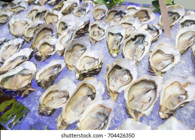 Oyster on ice in buffet line at hotel