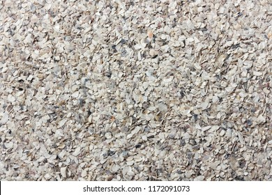 Oyster shell, oyster shell crushed