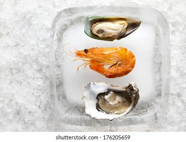 oyster and shrimp redy to serve on an ice block