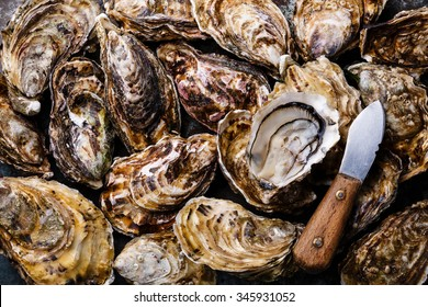 Oysters background with Open Oyster and knife