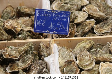 Oysters at Cannes market, France.