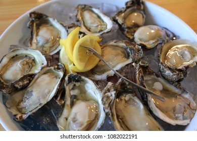 oysters half shell in ice with lemon wedges