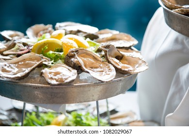 oysters half shell on ice in tray with lemon wedges