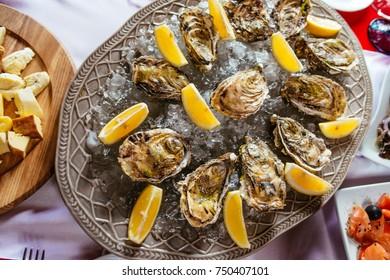 Oysters with lemon and ice on the plate on the dinner table