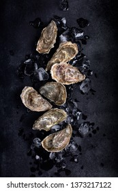 Oysters on black background. Shellfish contains a mass of beneficial micronutrients and vitamins that beneficially affect the entire body