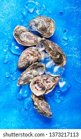 Oysters on blue background. Shellfish contains a mass of beneficial micronutrients and vitamins that beneficially affect the entire body