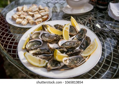 Oysters on a glass table in a summer park