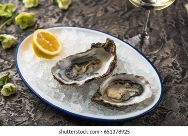 Oysters on ice, glass of wine and a flower close-up on a table. Healthy fresh food.