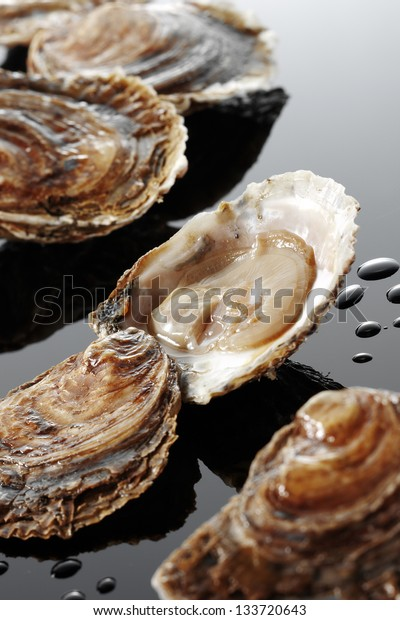 oysters on reflecting background