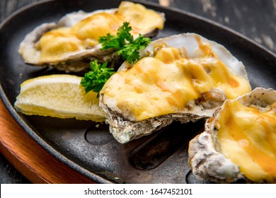 Oysters in a pan in a creamy sauce and cheese. Against a dark background
