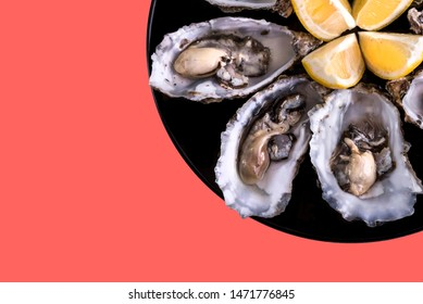 Oysters plate with lemon on coral background. Served table with oysters and lemon. Fresh oysters close-up top view. Healthy sea food. Oyster dinner with champagne in restaurant. Sea food