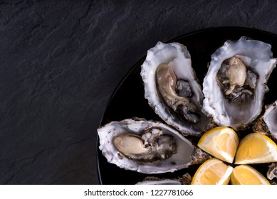 Oysters plate with lemon on grey background. Served table with oysters and lemon. Fresh oysters close-up top view. Healthy sea food. Oyster dinner with champagne in restaurant. Gourmet food. Sea food