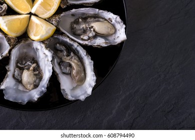 Oysters plate with lemon on grey background. Served table with oysters and lemon. Fresh oysters close-up top view. Healthy sea food. Oyster dinner with champagne in restaurant. Gourmet food. Sea food.