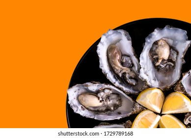Oysters plate with lemon on orange background. Served table with oysters and lemon. Fresh oysters close-up top view. Healthy sea food. Oyster dinner with champagne in restaurant. Sea food.
