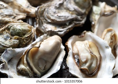 Oysters steamed with Japanese sake