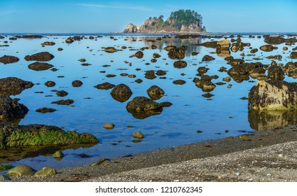 Ozette Look Trail in Washington, Pacific Northwest - Olympic National Park