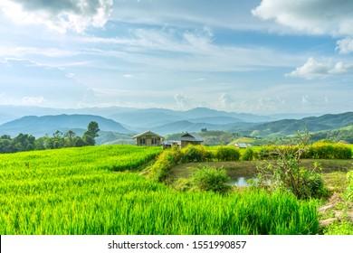 Pa Bong Piang Rice Terraces in Mae Chaem, Chiang Mai, Thailand.