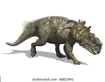 The pachyrhinosaurus, a dinosaur from the Late Cretaceous period - 3d render.