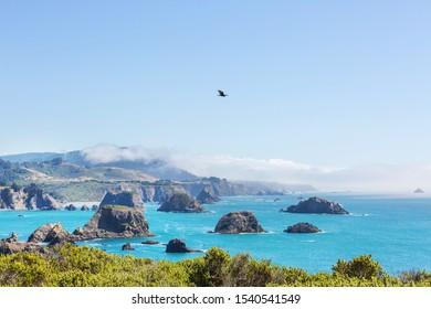 Pacific Coast in California, USA