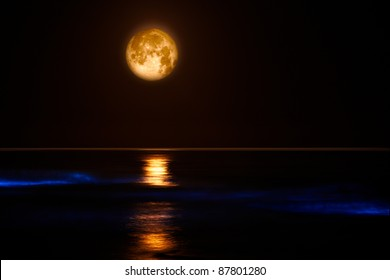 Pacific Coast Waves & Full Moon ~ Red Tide Lingulodinium Polyedrum The electric blue glow in these pacific coast waves is caused by a dinoflagellate bloom commonly referred to as a red tide.