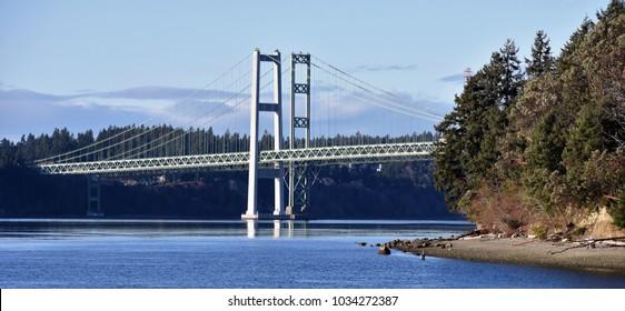 Pacific Coastal Bridge