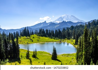 Pacific Crest Trail is one of the most famous trail in MT Rainier National Park of Washington state of US.