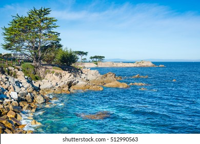 Pacific Grove, Monterey, California, USA
