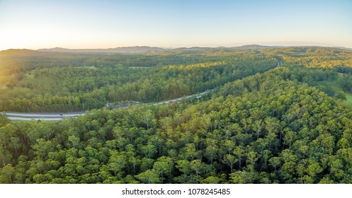 Pacific Highway passing throughout beautiful forests in Australian countryside at sunset
