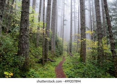 Pacific Northwest Images Stock Photos Vectors Shutterstock