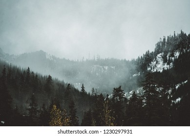 Pacific Northwest / Washington mountains with fog and clouds and trees