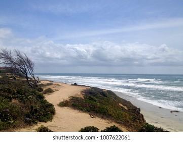 Pacific Ocean in Carlsbad, CA Facing South